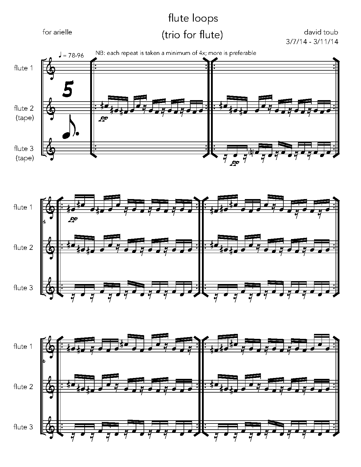 PMLP514942-flute loops (trio for flute).pdf