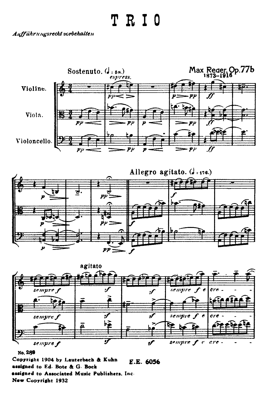 Reger String Trio in A Minor Op77b Score.pdf