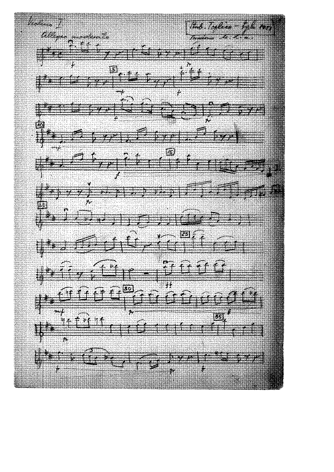 PMLP432154-manuscript no.2 clear-writing-copy by composer.pdf