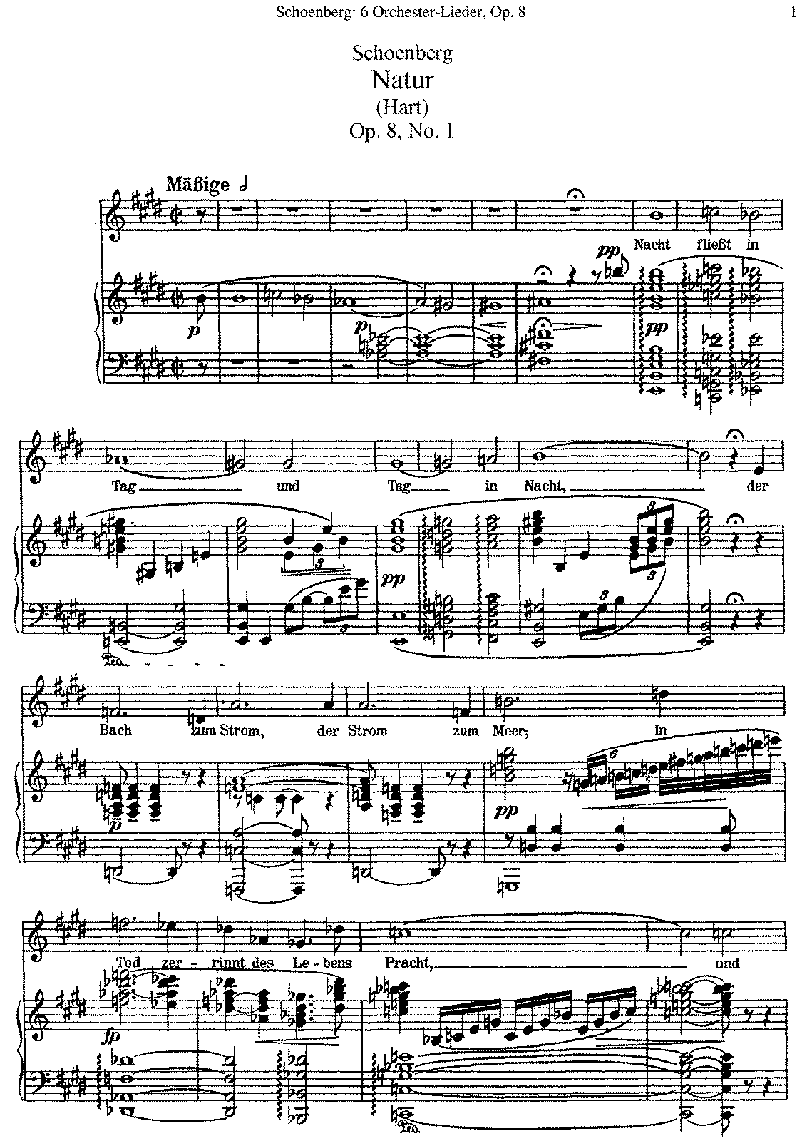 PMLP12601-Schoenberg - 6 Orchestra Lieder, Op. 8 (voice and piano).pdf