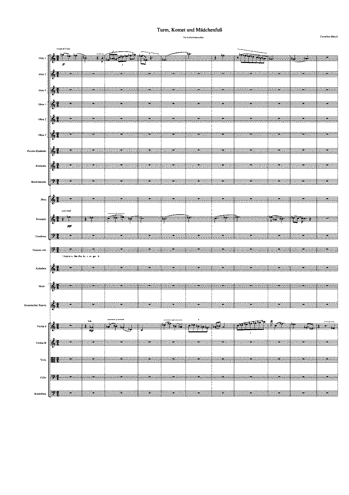 PMLP317491-TurmKometOrch.pdf