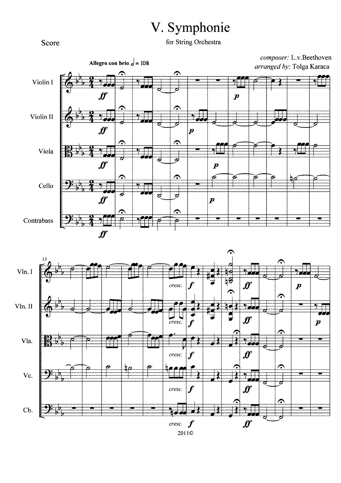 Symphony No. 5, 1st Movement Sheet music for Flute ...