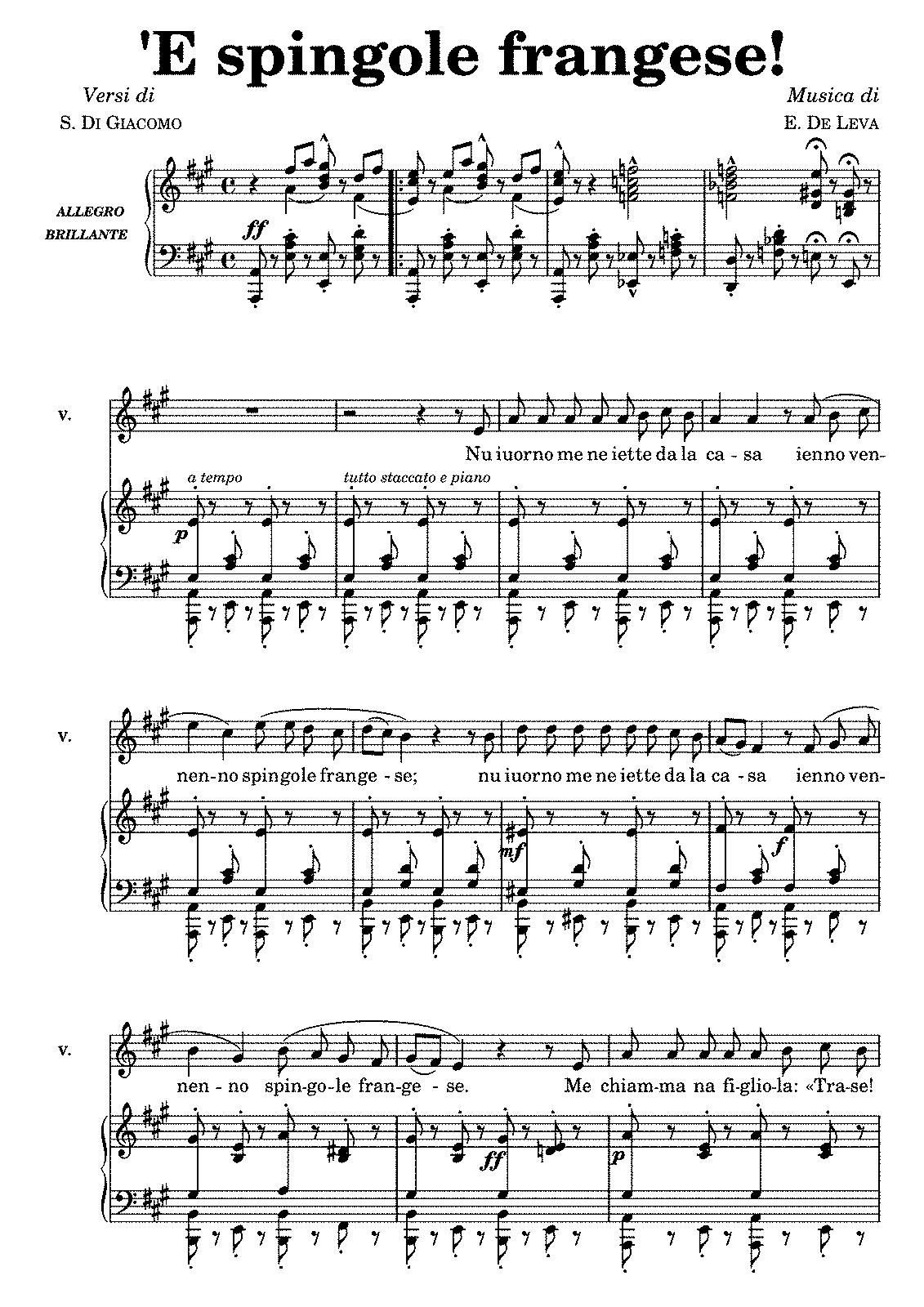 5 String Banjo Rolls